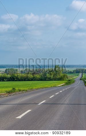 Road Among Fields With Spring Wheat