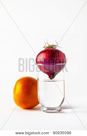 Onion In A Glass With Water Upside Down