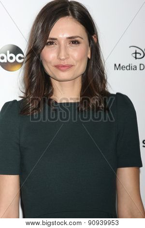 LOS ANGELES - MAY 17:  Karolina Wydra at the ABC International Upfronts 2015 at the Disney Studios on May 17, 2015 in Burbank, CA