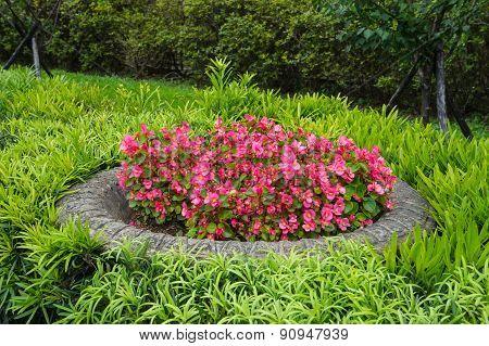Beautiful Outdoor Flower Pot In Pink