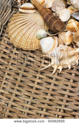 Aerial View Of Seashells In The Old Wicker Basket. Vertically.