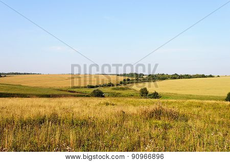 Fields And Meadows On The Hills