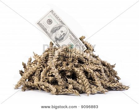 pile of grain with a dollar