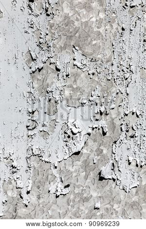 Gray  Dry Cracked Paint On A Wall