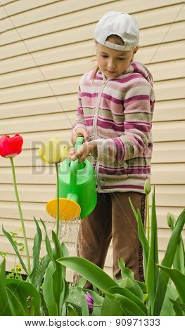The young girl with a watering can