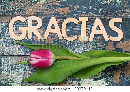Gracias (which means thank you in Spanish) written with wooden letters, and tulip