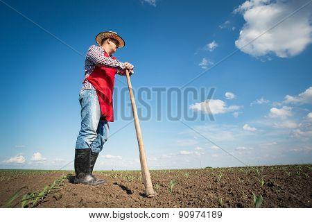 Farmer working in the corn field