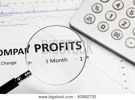 Profit Report On Desk