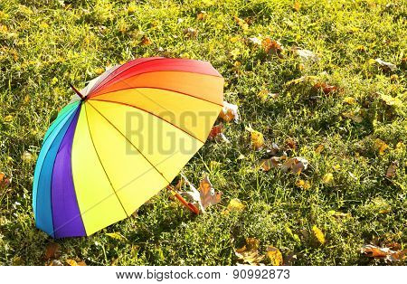 Colorful umbrella on grass, outdoors