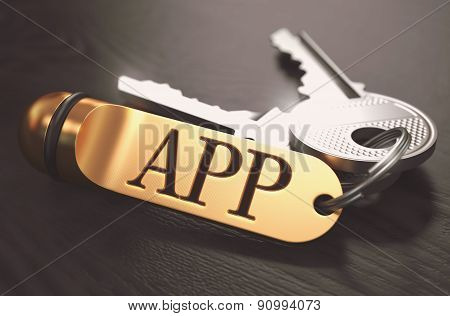 APP - Bunch of Keys with Text on Golden Keychain.
