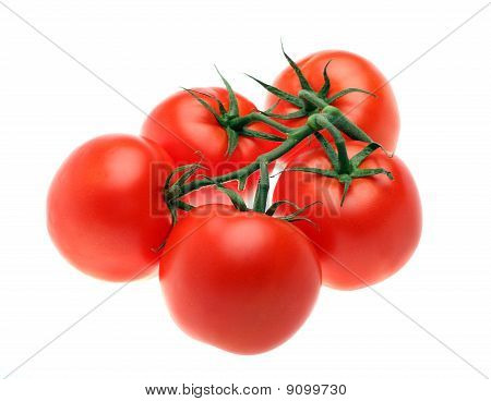 Red Tomatoes Isolated Over White Background