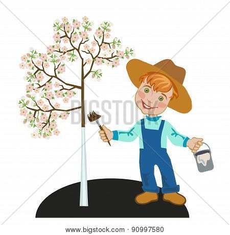 Gardener Boy With A Paint Brush Whitening Apple Tree.