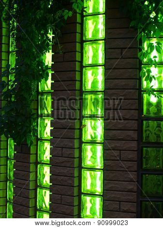 Wall And Windows Nightclub With Vines