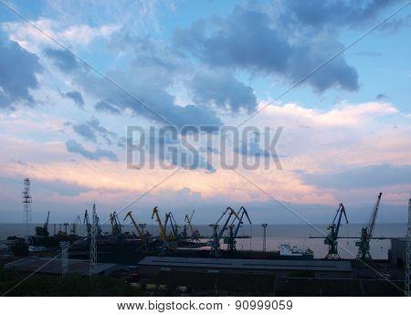 Cargo Cranes In The Pier