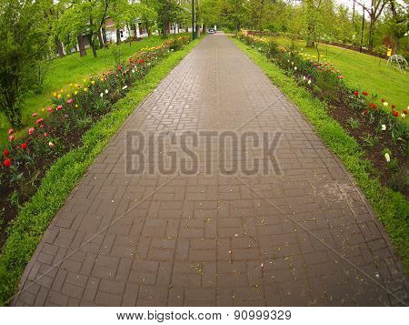 The Wide Pavement In The Park Of The Tiles During Spring Rain