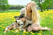 picture of shepherds  - A happy young woman is sitting in the grass in a dandelion flower meadow playing with her rescued German Shepherd Mix Dog - JPG