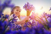 stock photo of purple iris  - little girl and purple iris - JPG