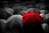 Red umbrella stand out from the crowd of many black and white umbrellas. Business, leader concept, b poster