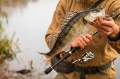 pic of fisherman  - A young man with a fish in his hands and spinning - JPG