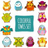 stock photo of owls  - Colorful Vector Owls set - JPG