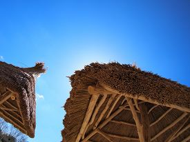 picture of canopy roof  - Two roof of reeds with bottom view - JPG