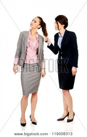 Angry businesswoman pulls her friends hair.