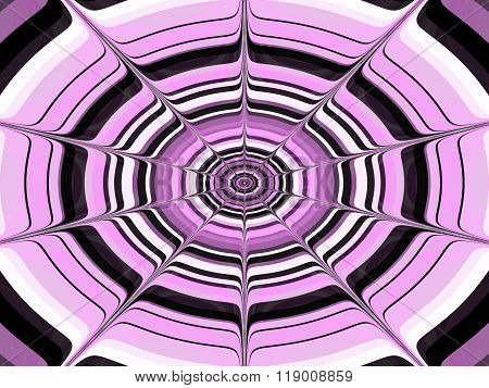 Pink black white concentric spiderweb pattern
