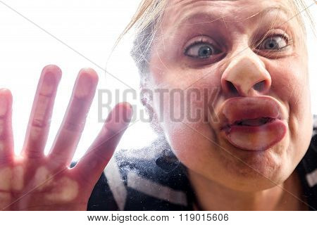 Woman With Fish Mouth At The Window