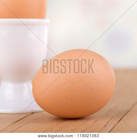 Brown Egg Closeup