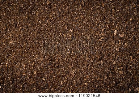 Close Up Soil Peat Moss Dirty Background And Texture