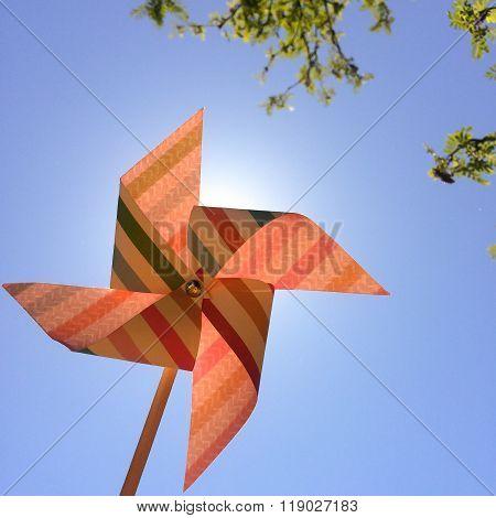 Pinwheel of Summer
