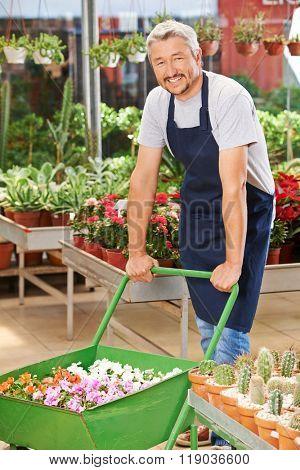 Smiling elderly man working in a garden center