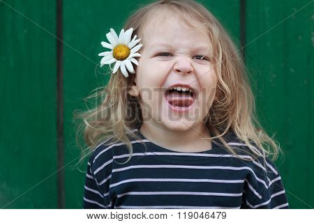 Head and shoulders portrait of two years old grimacing and snarling blonde girl with chamomile flower in her hair