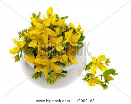Fresh yellow flowers of medicinal plant St. John's Wort heaped in a bowl, isolated on white background