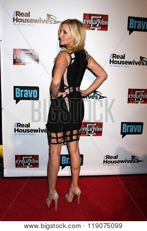 LOS ANGELES - DEC 3:  Camille Grammer at The Real Housewives of Beverly Hills Premiere Red Carpet 2015 at the W Hotel Hollywood on December 3, 2015 in Los Angeles, CA