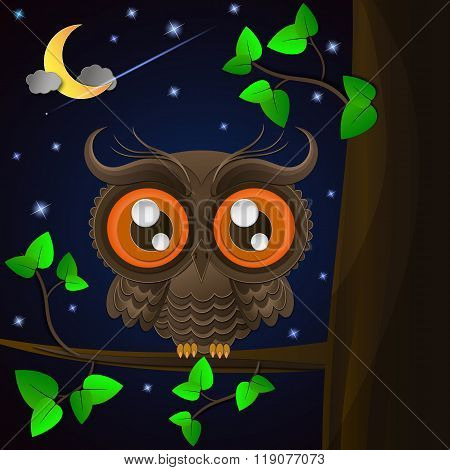 Owl And Moon, Nocturnal Sky.