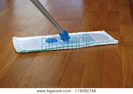 The Mop On The Parquet Floor