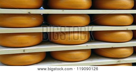 Emmental Cheese During Ripening In The Dairy
