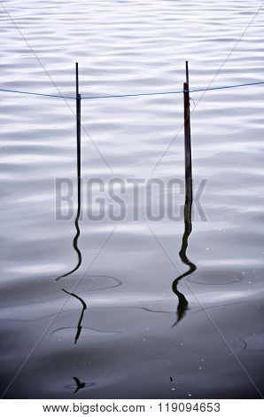 view of poles for fishing nets on standing water in La Albufera, Valencia, Spain