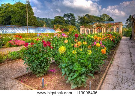 September sunshine and warm weather drew visitors to the beautiful gardens at Tyntesfield House HDR