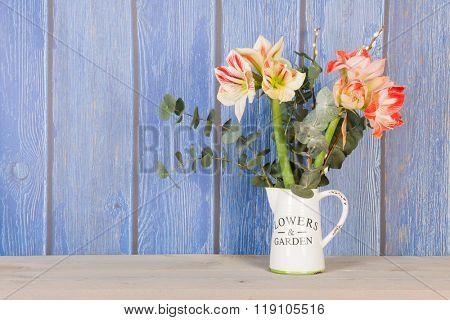 Bouquet Amaryllis in vase on blue background