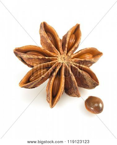 anise star isolated on white background