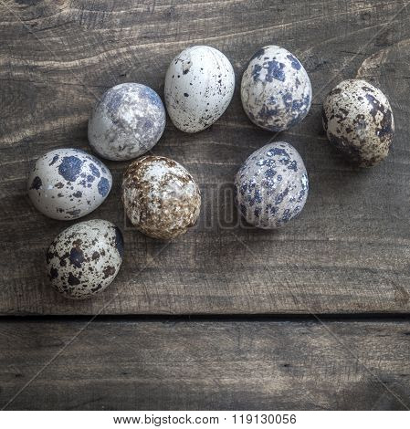 Quail Eggs On The Table