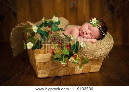 Newborn Baby Girl Has Sweet Dreams In Strawberries