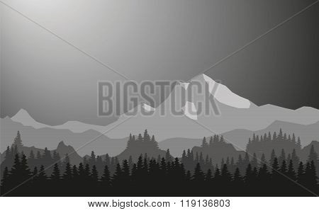 Vector Mountain Scenery. Coniferous Forests In The Foreground, The High Mountains In The Background.