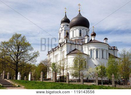 Ancient Cathedral In Lomonosov (oranienbaum), Russia