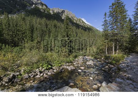 Roztoka Stream In Roztoka Valley. Tatra National Park. High Tatras, Carpathian Mountains. Nature Res