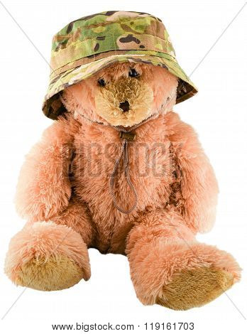 Teddy bear in a military hat isolated on white