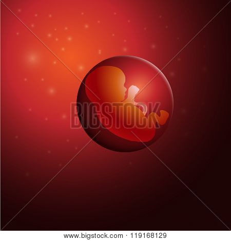 vector illustration of embryo, germ design, baby, fetus concept, nucleus, life