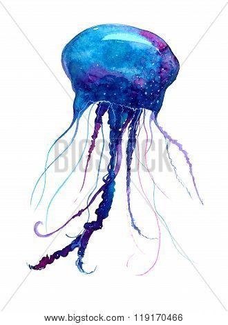 Jellyfish watercolor illustration. Medusa painting isolated on white background, colorful tattoo des